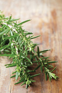 A Recipe for Rosemary