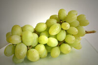 Antioxidants Extracted From Grape Seeds Show Promise for Cosmetic Use