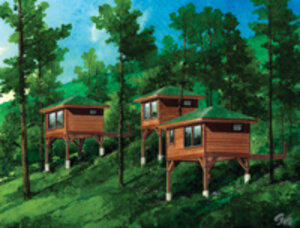Stonewater Cove Resort's Treehouse Spa, set to open in May in Table Rock Lake, MO, offers a luxury forest retreat on the shores of Table Rock Lake. A variety of organic treatments will be provided in individual elevated treatment rooms, or tree houses, th