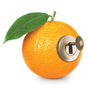 Keys to Unlocking the Benefits of Vitamin C