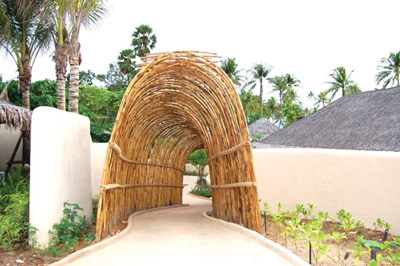 Arch made of bamboo