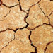 Dry vs. Dehydrated Skin: Causes and Treatments