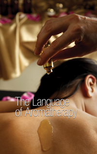 aromatherapy treatment in the spa