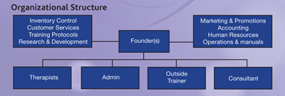 Phase 1: Organizational Structure