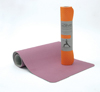 EquiFit Inc. AgSilver CleanMats
