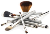 DermaQuest Skin Therapy DermaBrush Collection