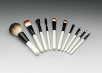 Qosmedix Professional Makeup Brush Set