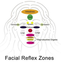 Facial Reflex Zones