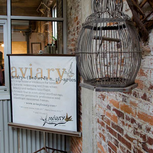 Spa Snapshot: Aviary [Beauty & Wellness Collective]