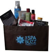 The Spa Buzz Luxe Bag