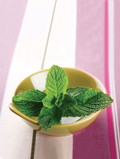 fresh mint in a yellow bowl