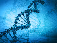 High-risk Melanoma-causing Gene Mutation Discovered