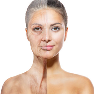 Fountain of Youth Found With 'Second Skin?
