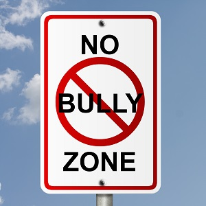 A no bully zone