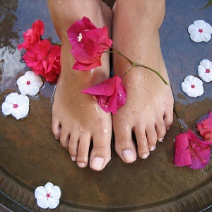 Wake Foot Sanctuary Explores New Markets