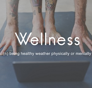 Wellness as a nouin